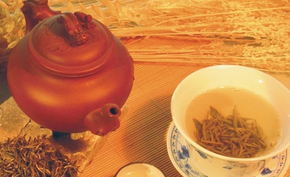 孝感龙剑茶