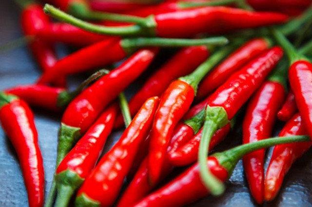 金川红辣椒