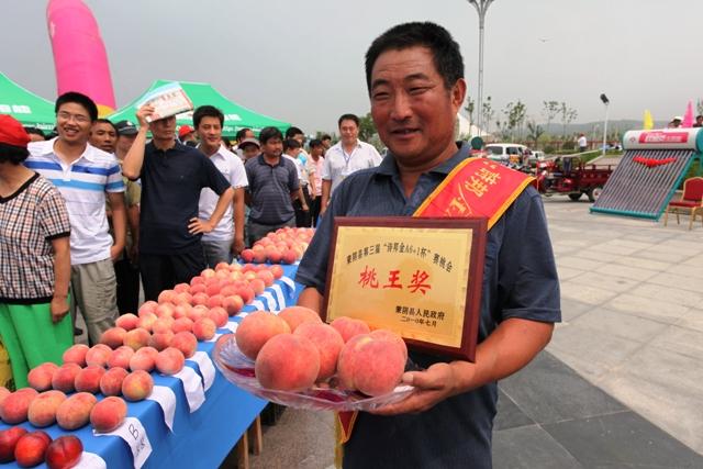 图3 蒙阴县举办的赛桃会