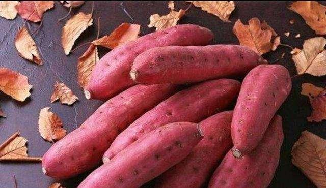 花园口红薯