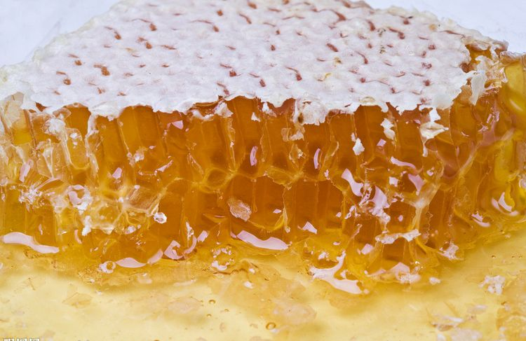 唐家河蜂蜜