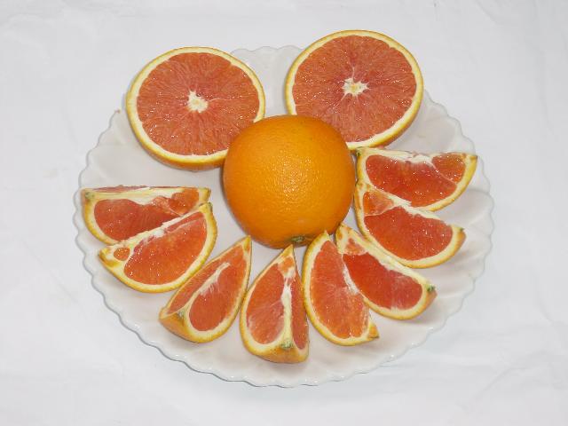 顺昌红肉脐橙