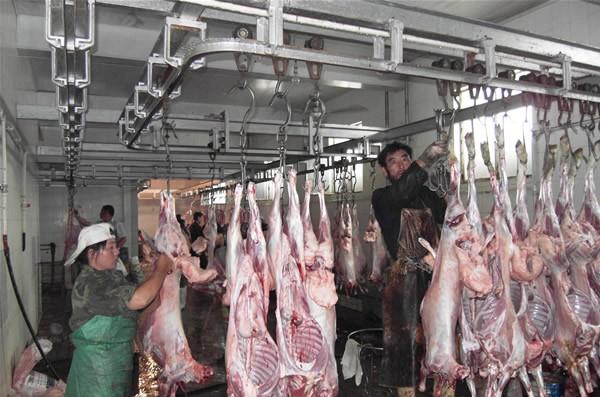 苏尼特地区羊肉生产车间