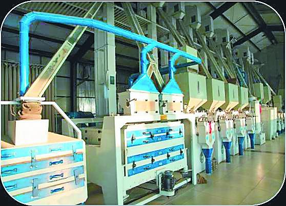 稻米加工生产线