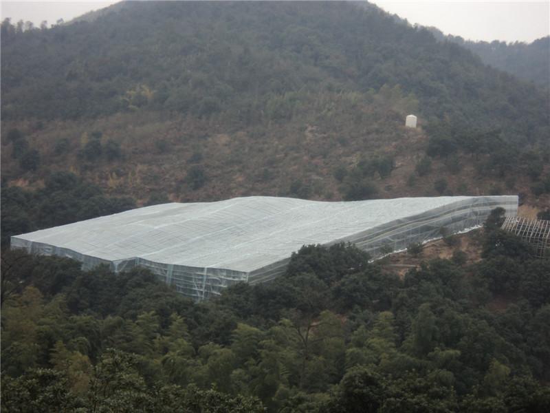 慈溪杨梅大棚设施栽培