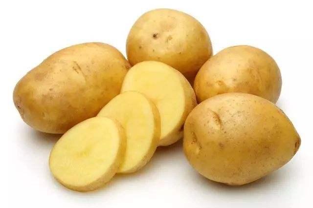 蒲县马铃薯