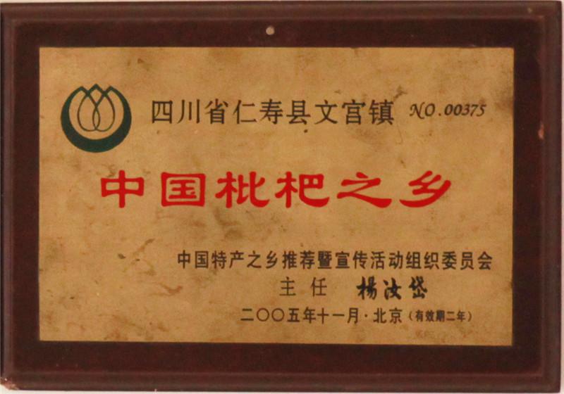 文宫枇杷荣誉