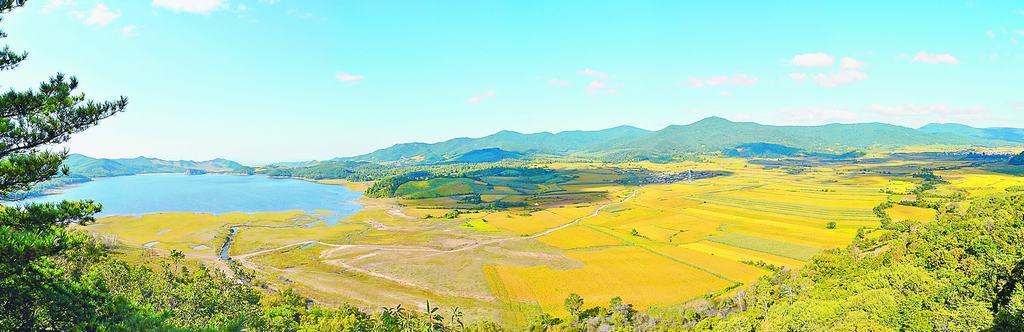 延寿大米种植基地