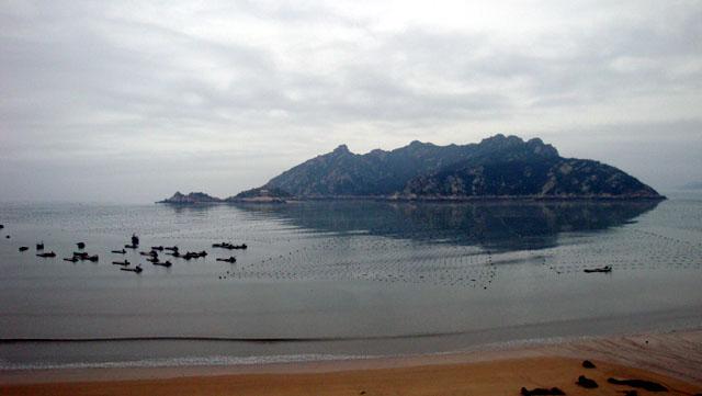 大京海带晾场