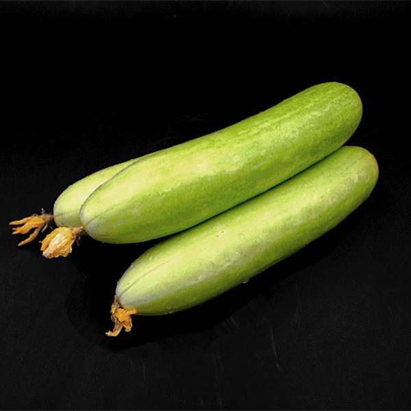 板桥白黄瓜