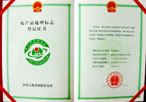 延津胡萝卜地理标志农产品证书