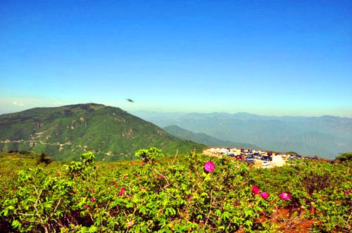 妙峰山环境