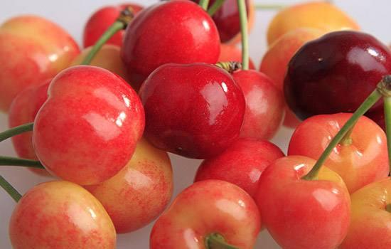 石埠子樱桃
