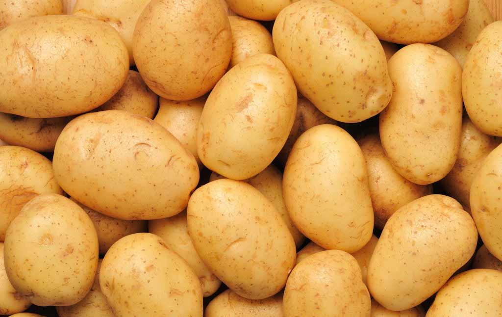阿荣马铃薯