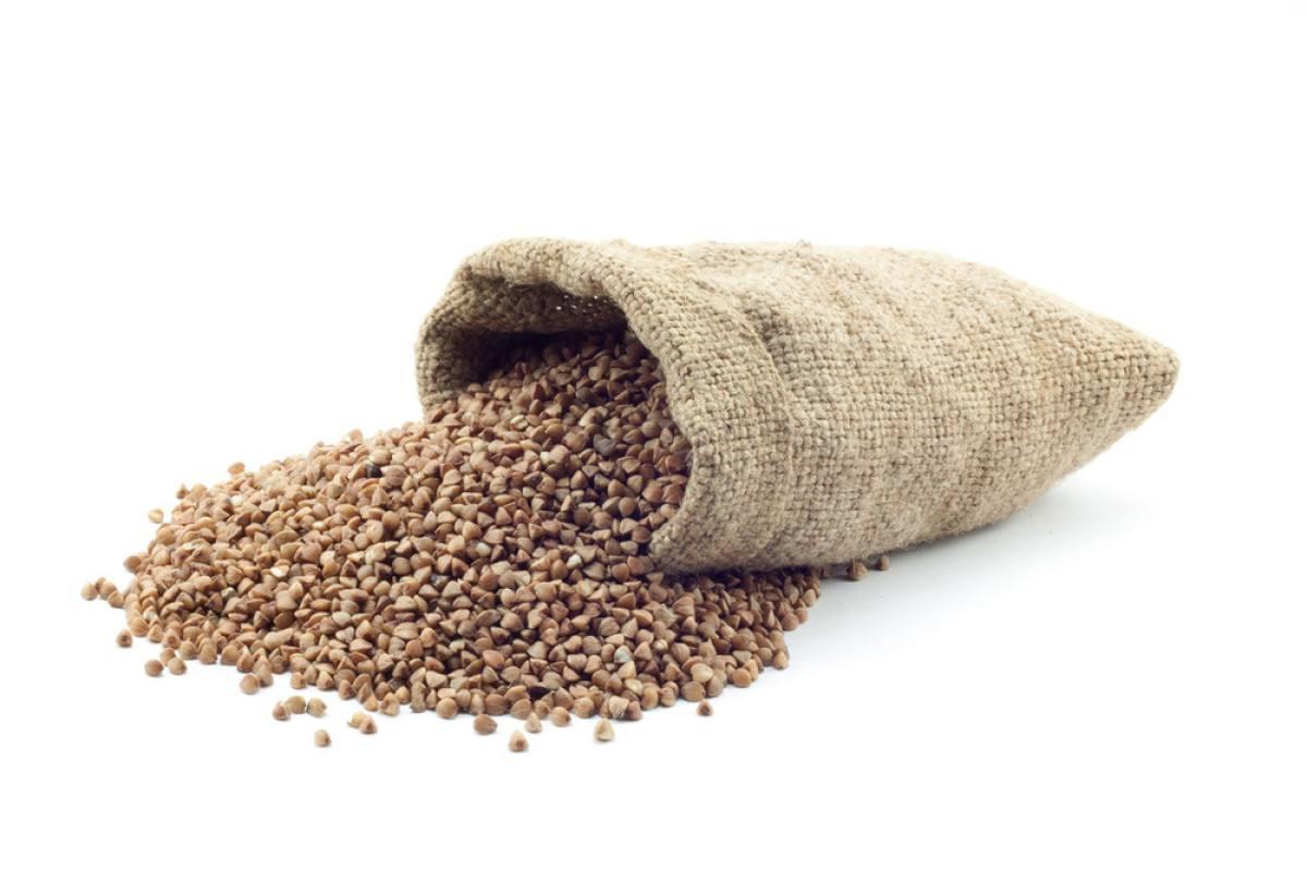 敖汉旗荞麦