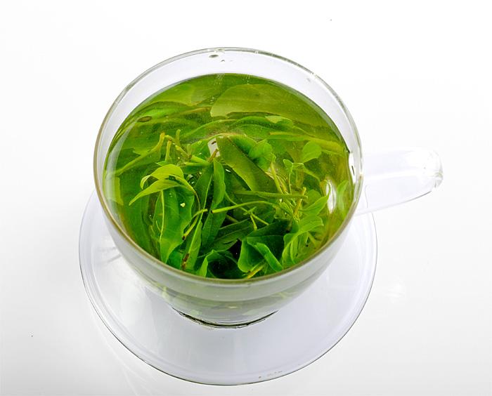 大新苦丁茶
