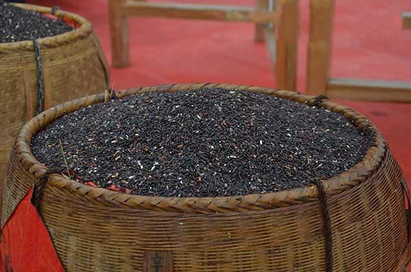 紫鹊界贡米