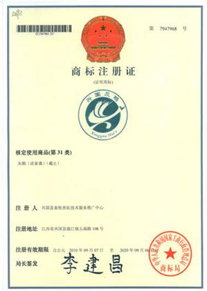 图4 兴国灰鹅地理注册商标